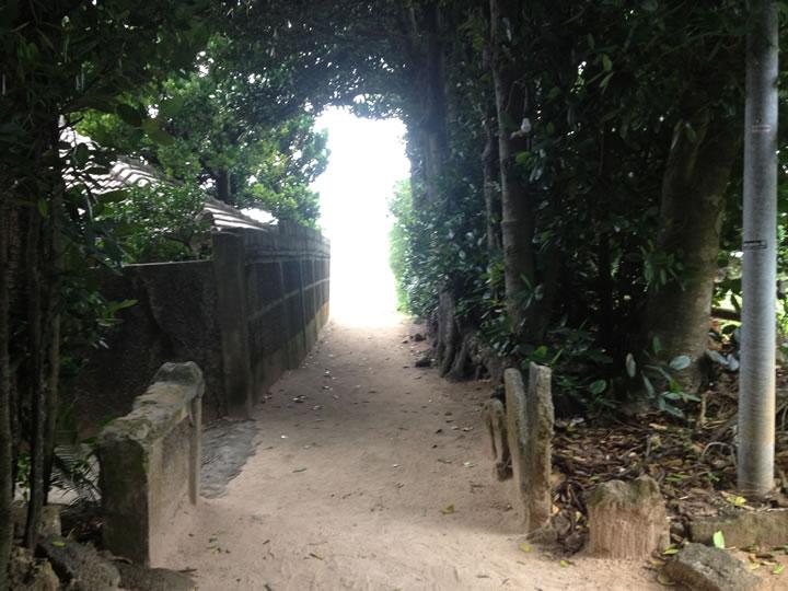 備瀬フクギ並木で昔の沖縄の集落の様子を垣間見る